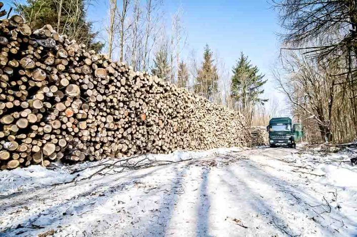 brennholz kaufen westerwald